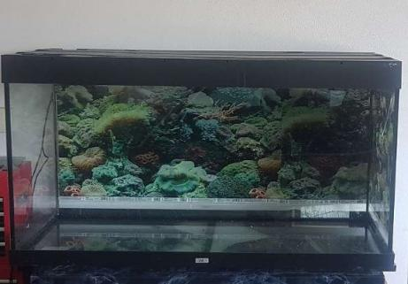 JEWEL 360L Aquarium 1