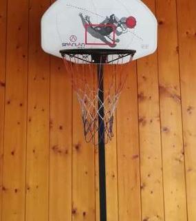 Panier de basket 1