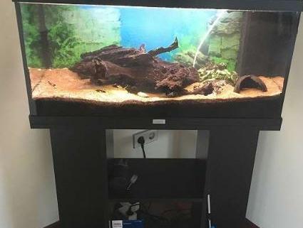 Aquarium 120l 1