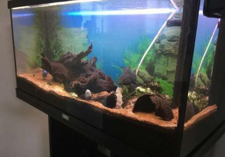 Aquarium 120l 2