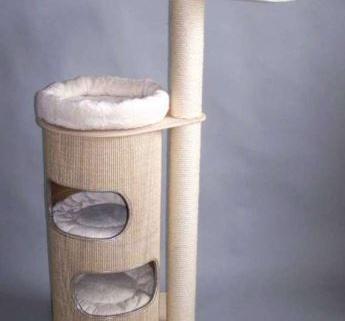 Arbre à chat de taille moyenne avec hamac 1