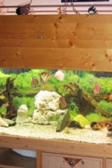 aquarium 720 litres
